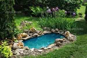 backyard pool - Copy